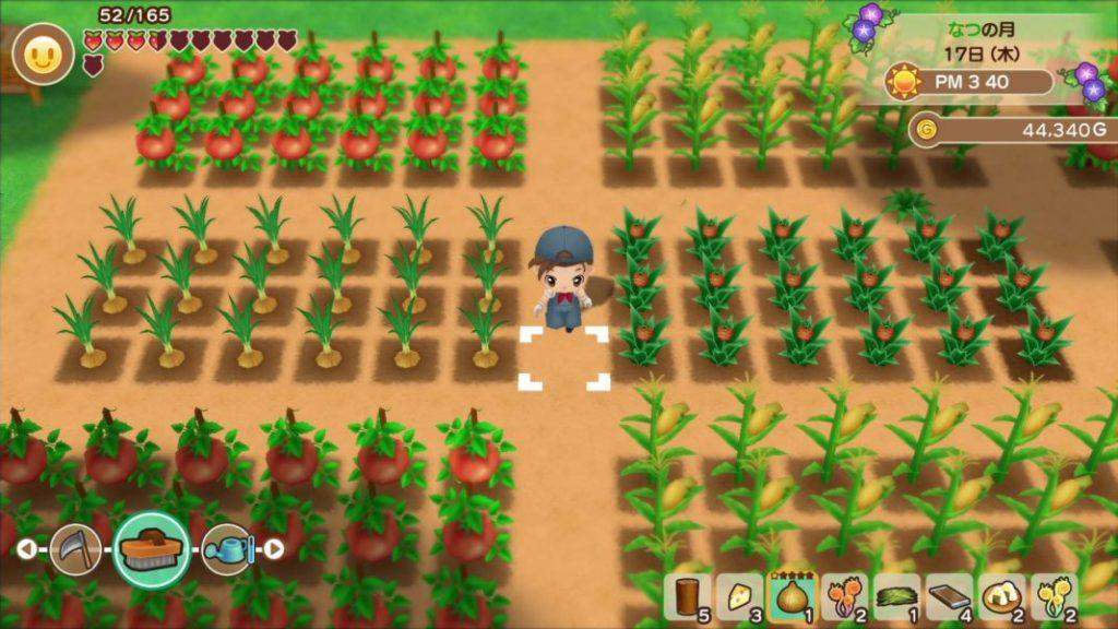 Game PC Online ของการปลูกผักทำฟาร์ม
